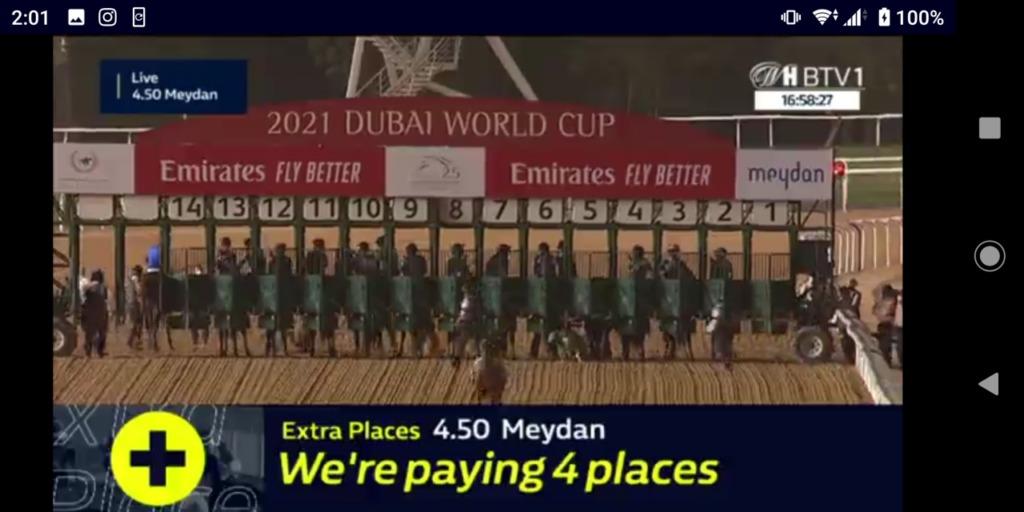 ドバイワールドカップのスタート直前の画像。