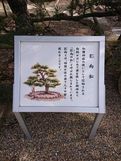 和田神社の影向松の御由緒掲示板。