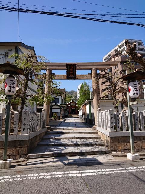 二宮神社の鳥居と参道の画像。